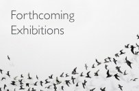 Forthcoming Exhibitions